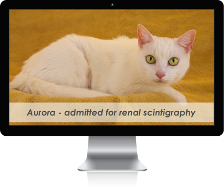 mac-display-overlay-patient-Aurora