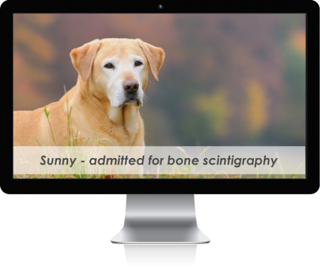 mac-display-overlay-patient-Sunny