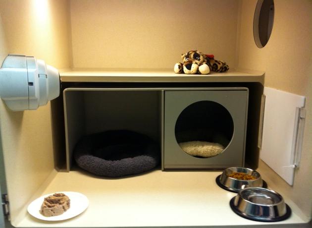 Cat Cottage Layout