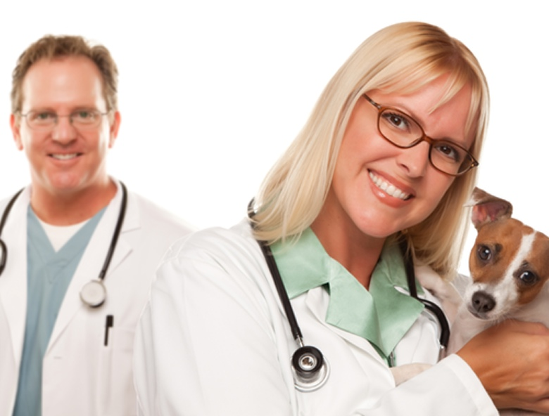 Veterinarians_780_No_overlay