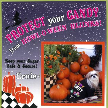 """""""Candy Security""""-a great card from Ernie & mom"""