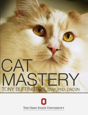 Caat Mastery